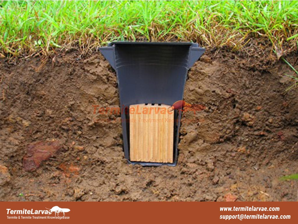 Pros and Cons of Termite Bait Stations